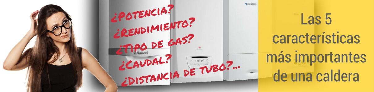 Características más importantes caldera de gas